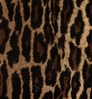 Leopard Coverking Dash Cover