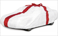 Gift Car Cover